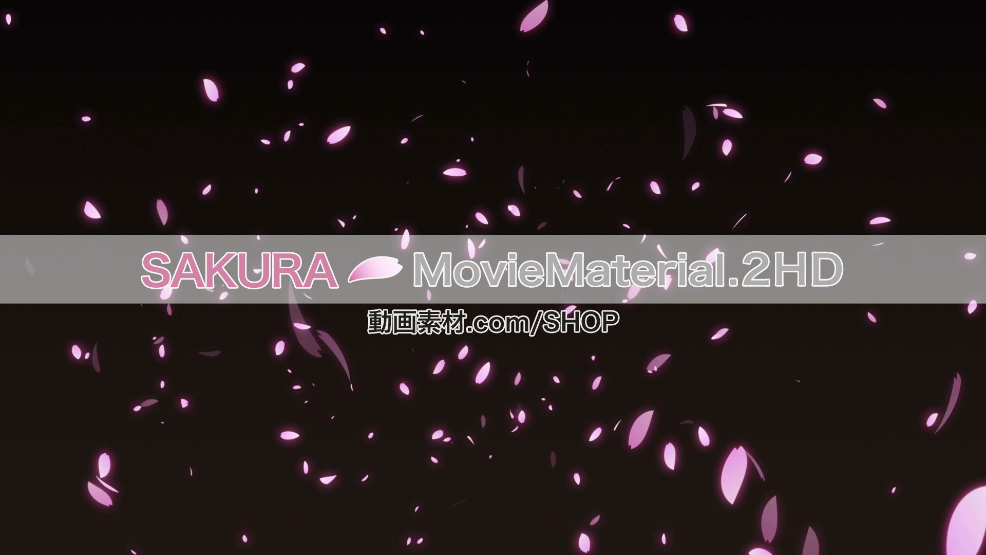 SAKURA2HD_001