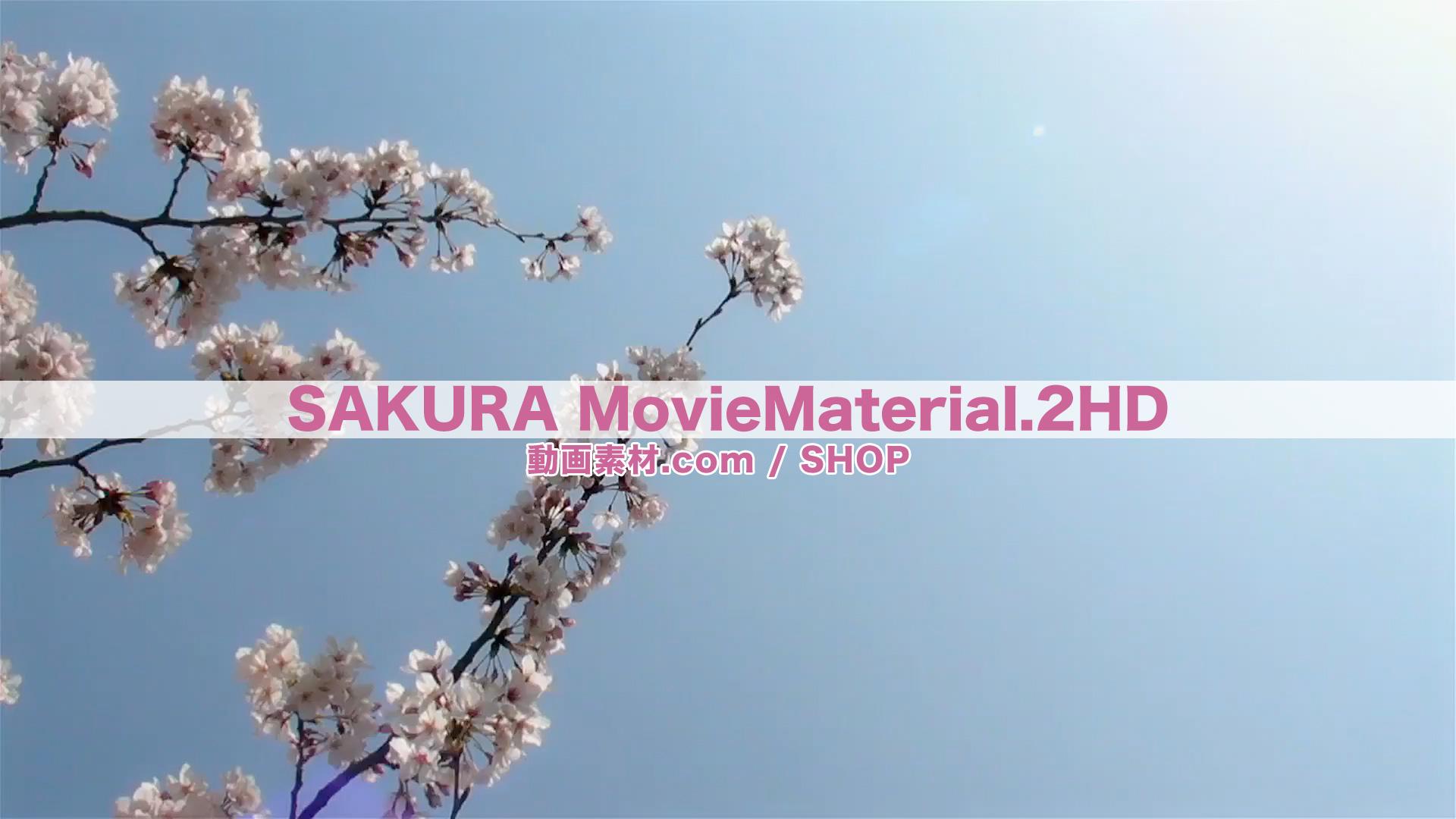 SAKURA2HD_3
