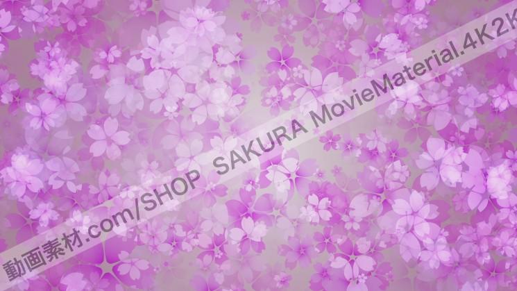 SAKURA MovieMaterial 4K2K 桜の花びら舞う動画素材3840×2160 ロイヤリティフリー5