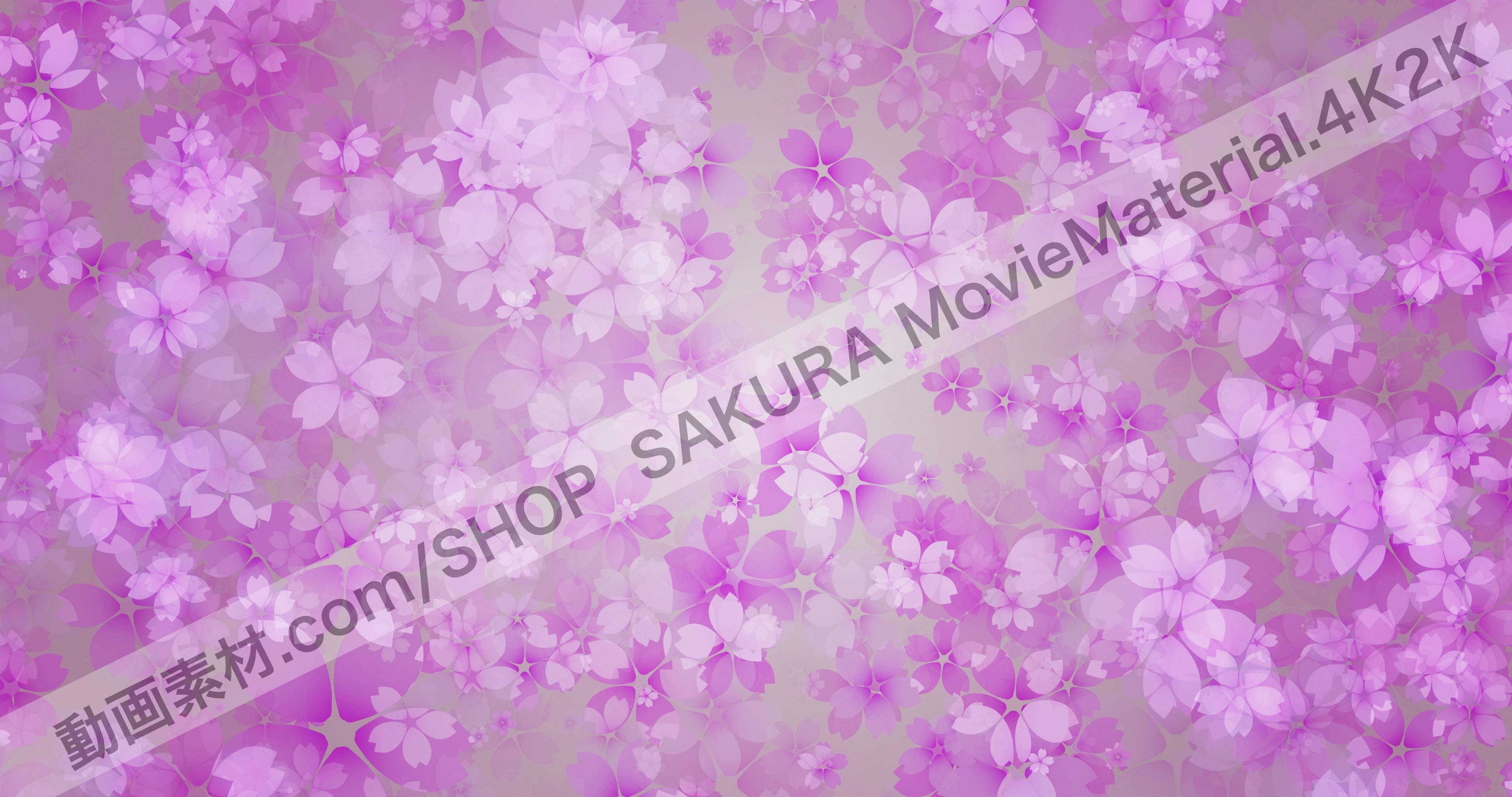 SAKURA4K2K_5