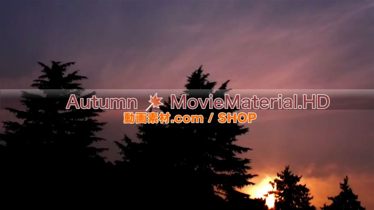 秋を題材にした実写映像素材とCG動画素材【Autumn MovieMaterial】7