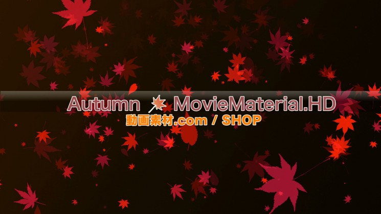 秋を題材にした実写映像素材とCG動画素材【Autumn MovieMaterial】11