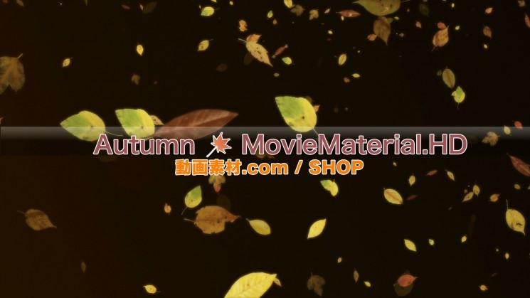 秋を題材にした実写映像素材とCG動画素材【Autumn MovieMaterial】9