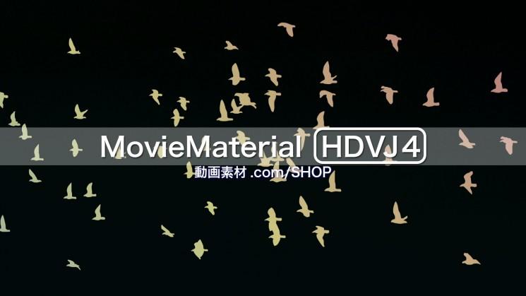 フルハイビジョン動画素材集 第4段【MovieMaterial HDVJ4】16