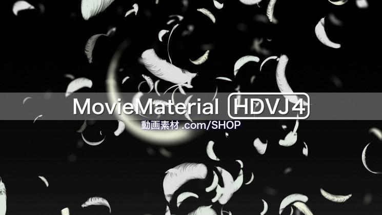 フルハイビジョン動画素材集 第4段【MovieMaterial HDVJ4】17