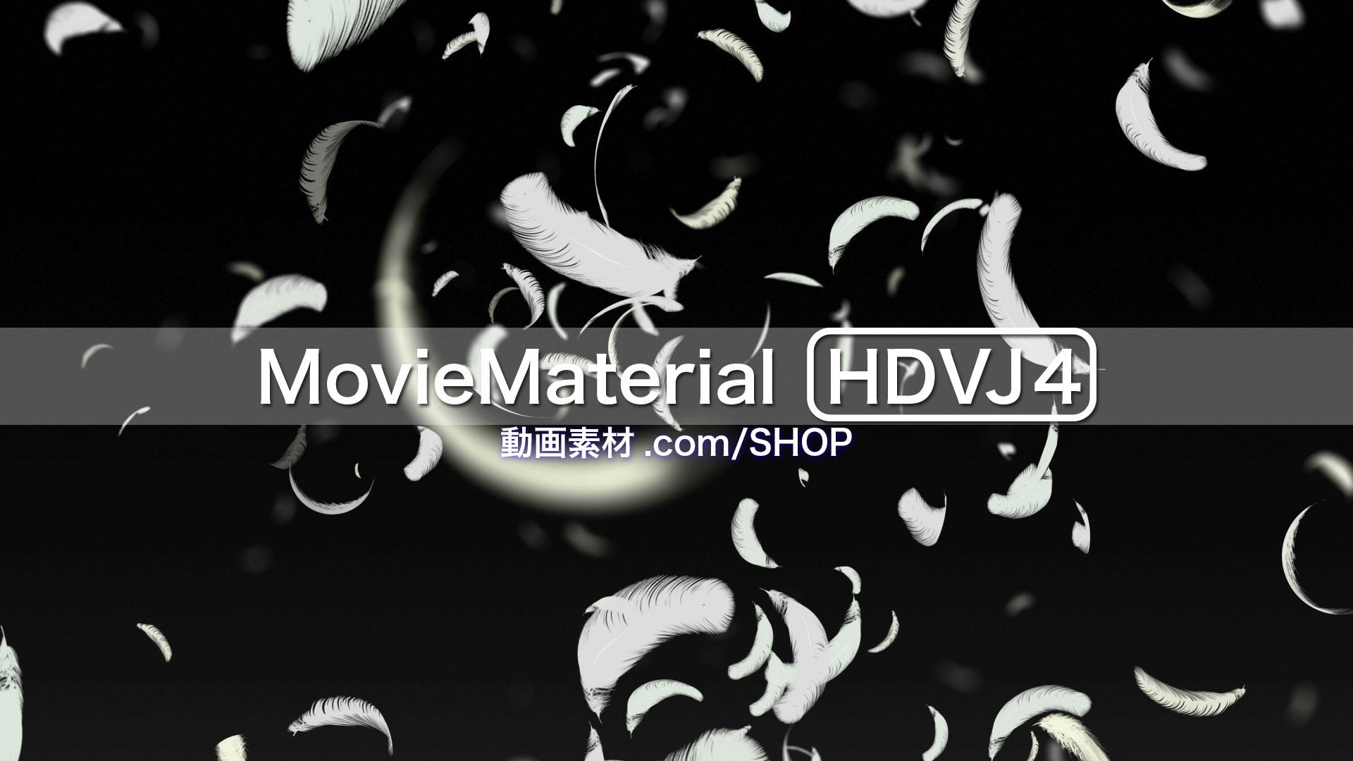 フルハイビジョン動画素材集第4段【MovieMaterial HDVJ4】ロイヤリティフリー(著作権使用料無料)8