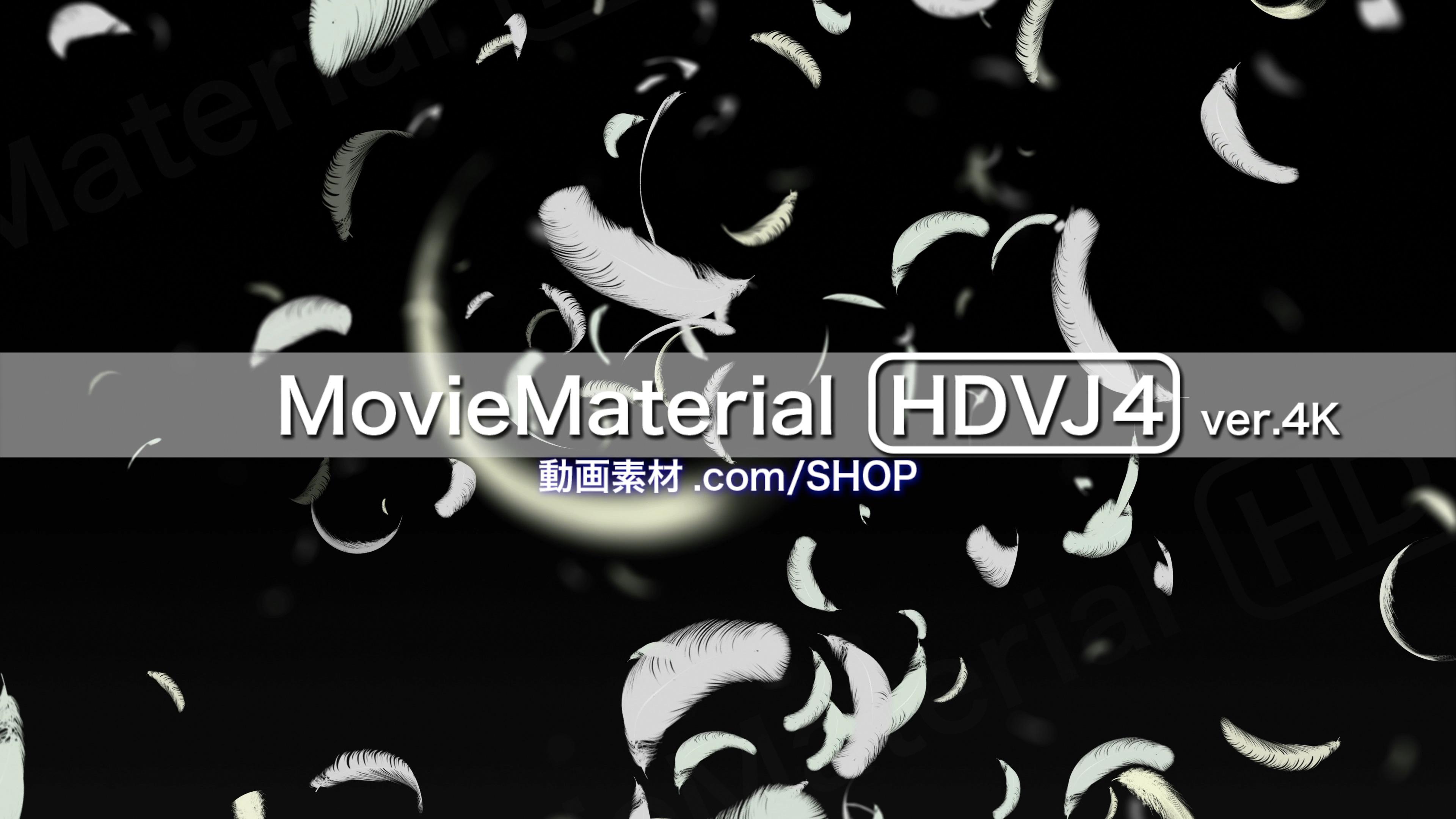 4K2Kループ動画素材集第4段【MovieMaterial HDVJ4 ver.4K】ロイヤリティフリー(著作権使用料無料)8