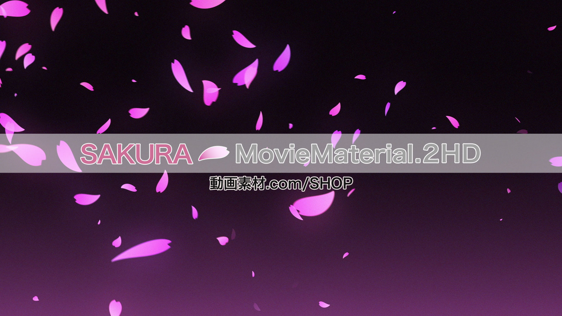 SAKURA2HDfalldance3