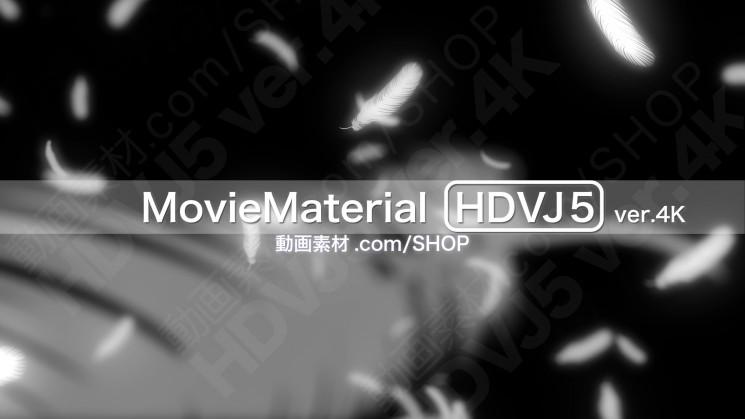 4K2K動画素材集 MovieMaterial HDVJ5 ver4K 14