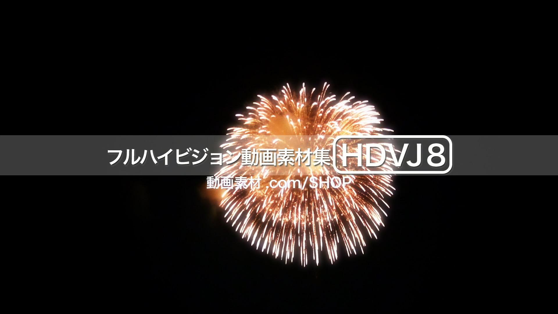 HDVJ8_13