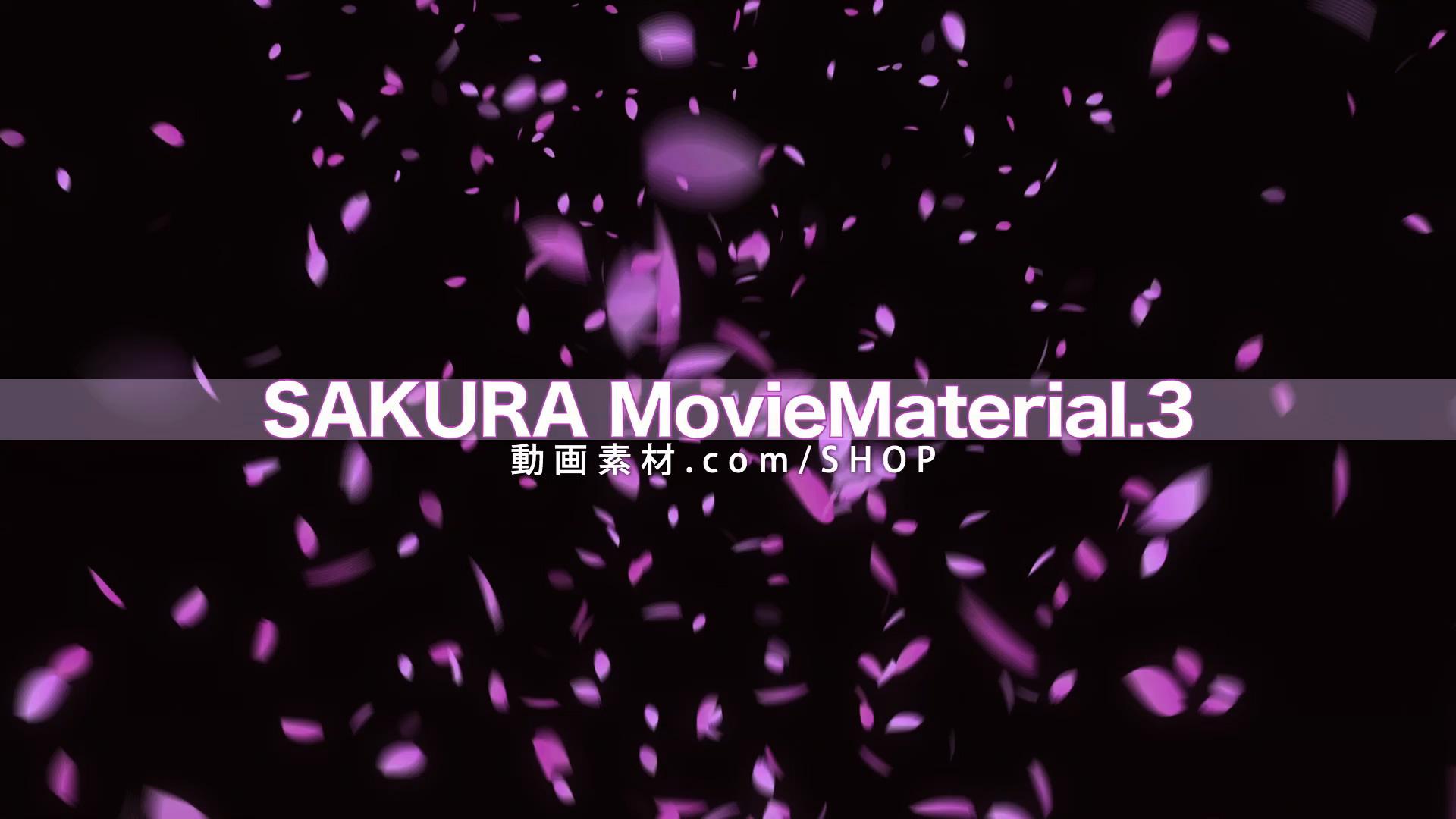 SAKURA3_001