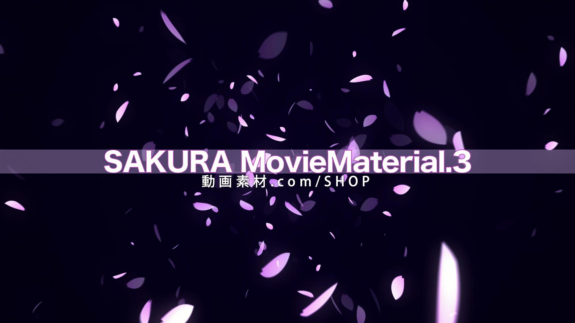 SAKURA3_002