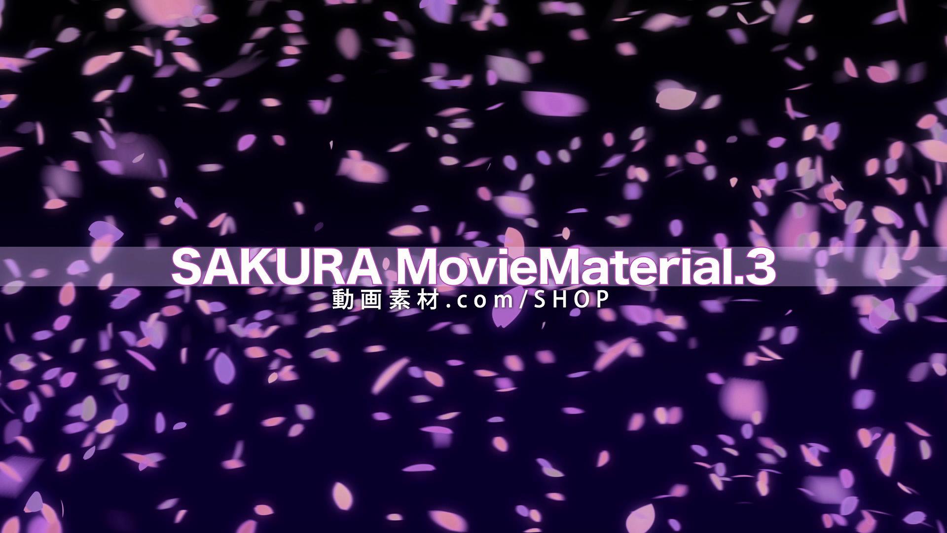 SAKURA3_004