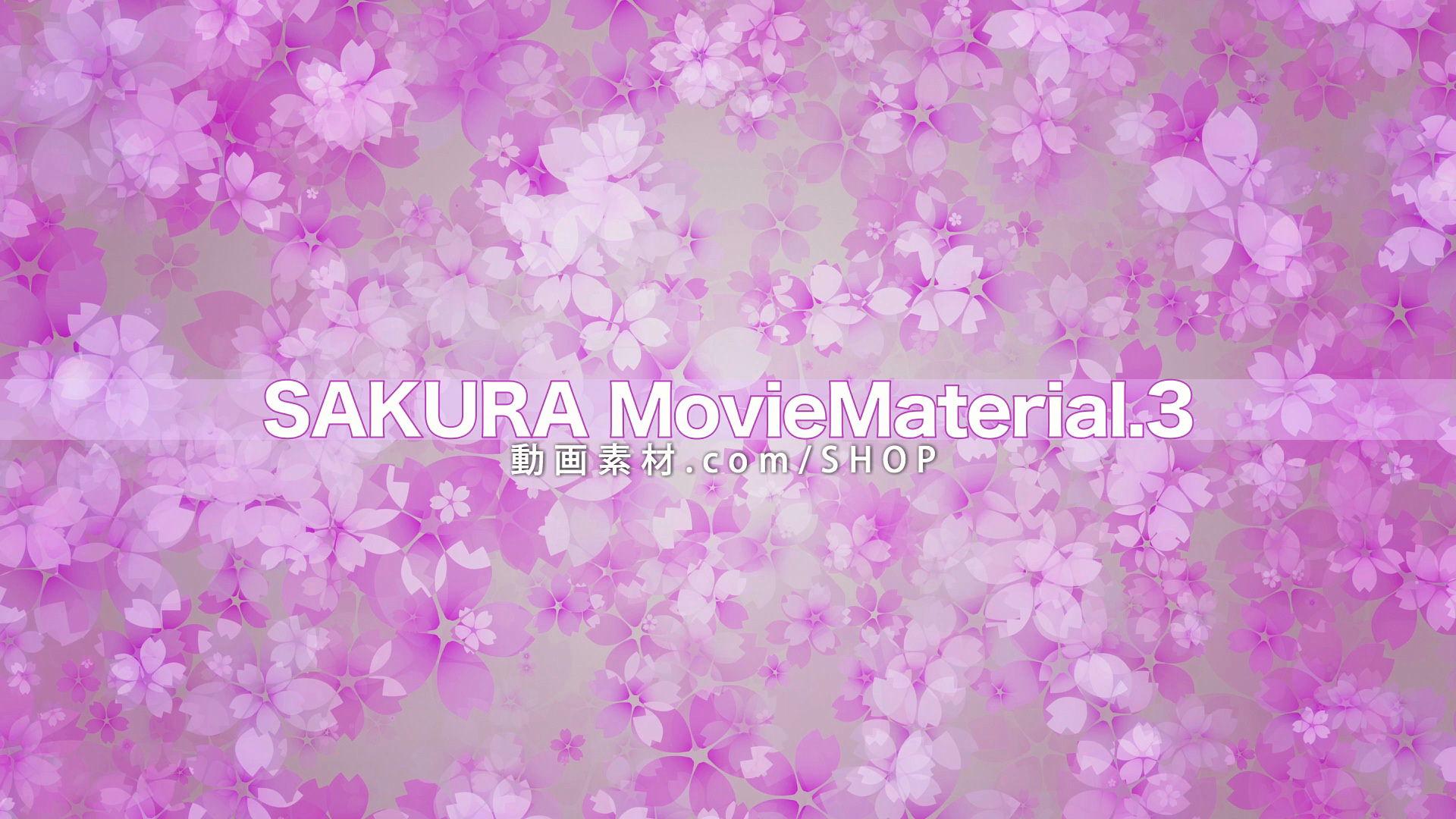 SAKURA3_005