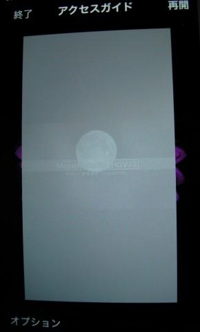 iOS 8 アクセスガイドの設定15