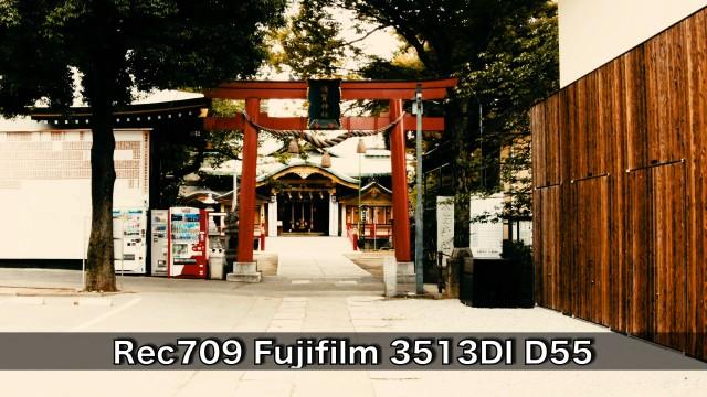 Rec709-Fujifilm-3513DI-D55