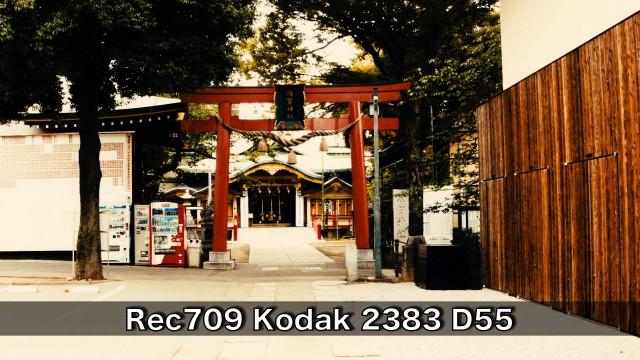 Rec709-Kodak-2383-D55