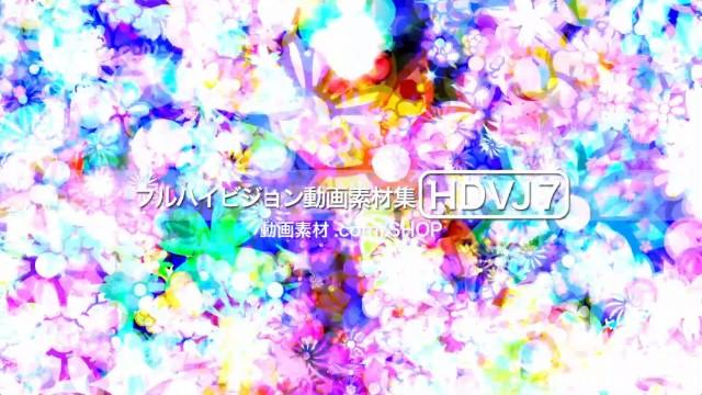 HDVJ7-0020
