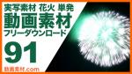 実写素材 花火 単発【フリー動画素材10本追加】