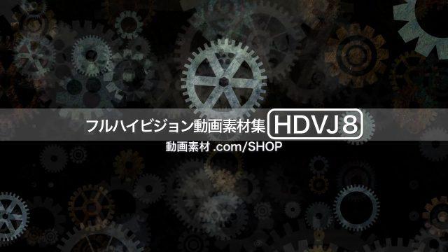 HDVJ8_06