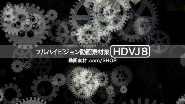 HDVJ8_07