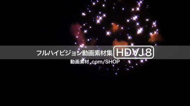 HDVJ8_11